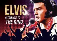 Elvis Liggend 200x144